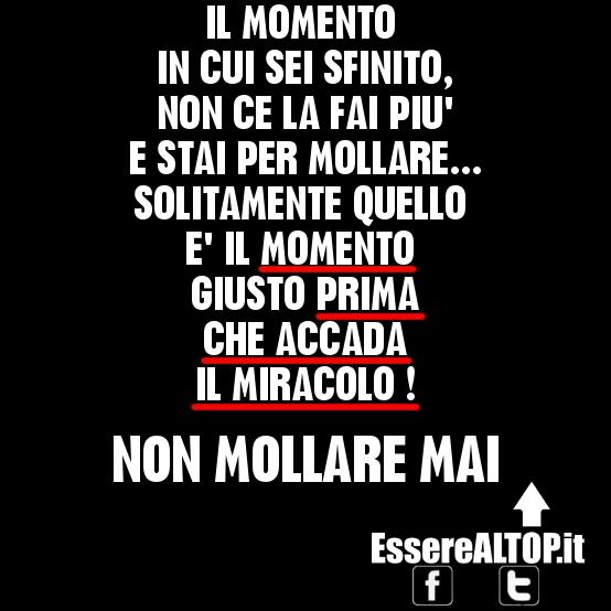Top NON MOLLARE MAI   EssereALTOP.it TH17